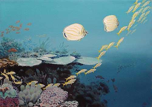 poissons-et-coraux